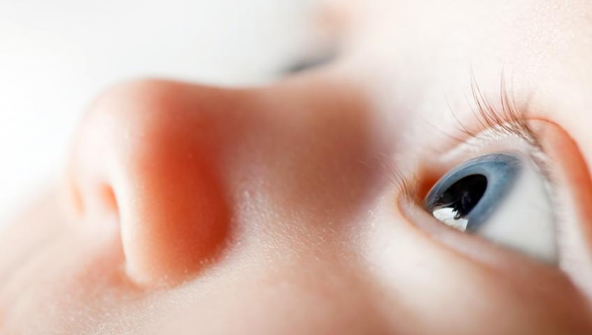 retinopatia da prematuridade tratamento em curitiba